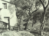 Country View of a Rural Residence Surrounded by Trees Photographic Print by Vincenzo Balocchi