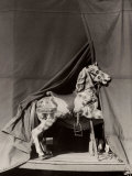 Rocking Horse Photographic Print by Vincenzo Balocchi