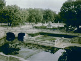The Gardens of the Fountain at Nimes Photographic Print by Henrie Chouanard
