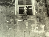 Vase of Flowers under a Window on the External Wall of an Old House Photographic Print by Vincenzo Balocchi