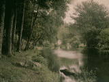The Forest of Love at Pont-Aven Photographic Print by Henrie Chouanard