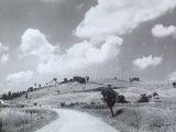 Landscape Sterza, 1959 Photographic Print by Vincenzo Balocchi