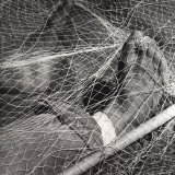 Feet in a Fishing Net Photographic Print by Vincenzo Balocchi