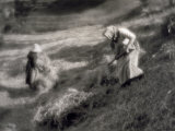 Two Peasants Collecting New-Cut Hay Photographic Print by Vincenzo Balocchi