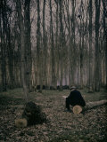 Man Reading a Newspaper in a Forest Photographic Print by Henrie Chouanard