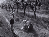 Kids in a Field Photographic Print by Vincenzo Balocchi