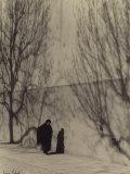 Shadows Photographic Print by Vincenzo Balocchi
