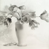 Vase with Tulips Photographic Print by Vincenzo Balocchi