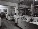 Technicians Working in the Laboratory of the Naarden Leepen Factory Photographic Print by A. Villani