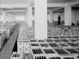 Products Ready to Be Shipped, Peroni Factory in Naples Photographic Print by A. Villani