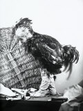 Child Dressed as a Cockerel Photographic Print by Marion Wulz
