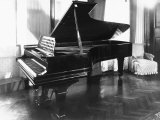 Steinway and Sons Piano in a Room Photographic Print by Carlo Wulz