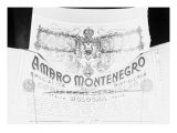 Billboard Advertising Amaro Montenegro, Produced by the Cobianchi Stanislao Distillery, Bologna Giclee Print by A. Villani