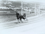 Trotting Track, Hippodrome of Montebello Photographic Print by Carlo Wulz