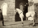 Portrait of Oscar Gentilomo, President of Credit, on Horseback Photographic Print by Carlo Wulz