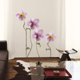 Japanese Anemones Wall Decal
