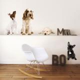 Cachorros Decalques de parede
