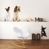 Cachorros Adesivo de parede