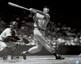 Ted Williams Posters