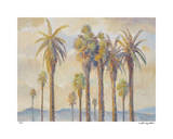 Palm Desert Grove II Giclee Print by David Harris