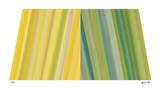 Infiniti Color II Giclée-Druck von Louis Vega Trevino