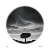 Sunlit Tree Edition limitée par Ken Paul