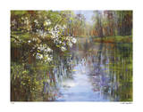 Spring Reflections I Giclee Print by Carol Buettner