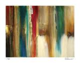 Shadows End II Limitierte Auflage von Elise Remender