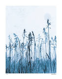 Pastoral Moment Giclee Print by Lilli Farrell