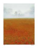 Andalusia I Limitierte Auflage von Elise Remender