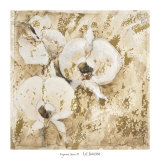 Fragrant Snow II Print by Elizabeth Jardine