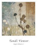 Organic Elements I Prints by Tandi Venter