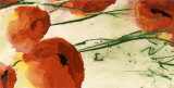 Poppies Prints by Heidi Reil
