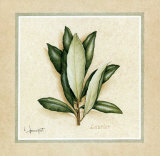 Herbes I Prints by Vincent Jeannerot