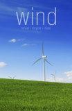 Wind Prints