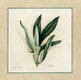 Herbes IV Print by Vincent Jeannerot