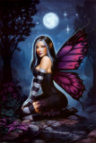 Night Fairy Poster