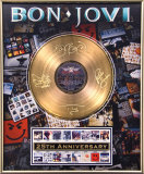 Bon Jovi Framed Memorabilia