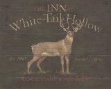 White Tail Hollow Kunstdrucke von Stephanie Marrott