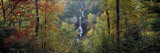 Waterfall in a Forest, Raven Cliff Falls, Sumter National Forest, South Carolina, USA Photographic Print by  Panoramic Images