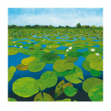 Waterlilies Posters by Alexander Hamawi