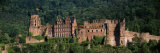 Castle on a Hillside, Heidelberg, Baden-Wurttemberg, Germany Photographic Print by  Panoramic Images