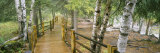 Boardwalk Along a River, Gooseberry River, Gooseberry Falls State Park, Minnesota, USA Photographic Print by  Panoramic Images