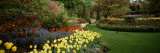 Flowers in a Garden, Butchart Gardens, Brentwood Bay, Vancouver Island, British Columbia, Canada Photographic Print by  Panoramic Images