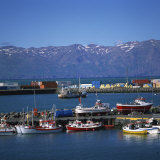Fishing Boats in Harbour, Husavik, North Iceland, Polar Regions Photographic Print by David Lomax