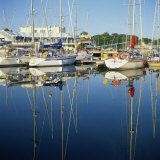 Marina, Howth, County Dublin, Republic of Ireland, Europe Photographic Print by David Lomax