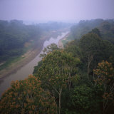 Morning Mists in Rio Negro Region of Amazon Rainforest, Amazonas State, Brazil, South America Photographic Print by Geoff Renner