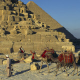Bedouin and Two Camels Passing by the Pyramids, Giza, UNESCO World Heritage Site, Cairo, Egypt Photographic Print by Eitan Simanor