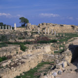 Roman Odeon Concert Venue and Hellenistic and Roman Gymnasium in Salamis, North Cyprus Photographic Print by Christopher Rennie