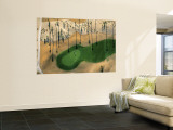 Golf Course, Phoenix, Arizona Wall Mural